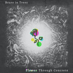 Bears In Trees: Flower Through Concrete – single review