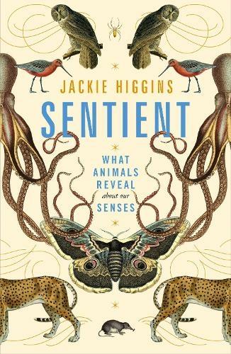 Jackie Higgins: Sentient – book review