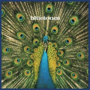 The Bluetones Expecting to Fly