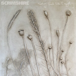 Scrimshire: Nothing Feels Like Everything – album review