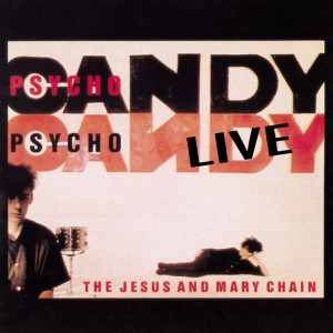 10 thoughts whilst watching the Jesus And Mary Chain play Psychocandy live in Newcastle