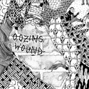 Black Pus and Oozing Wound announce split LP release…
