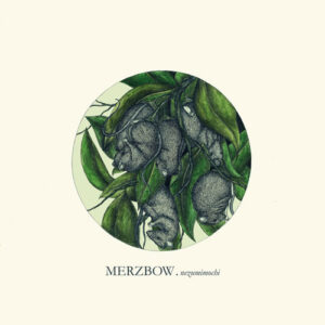 MERZBOW to release 'Nezumimochi' picture disc vinyl & CD…