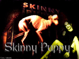 Skinny Puppy Demand $666,000 From The Us Government…