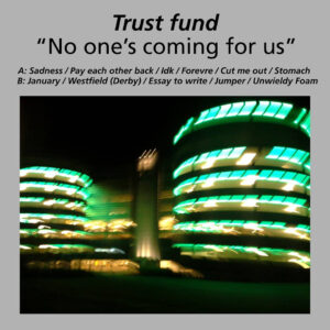 Trust Fund: No One's Coming For Us – album review