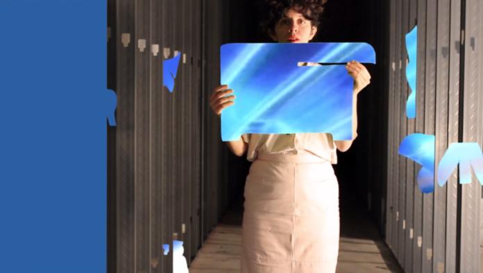 danimal blue corridor