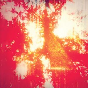 Odonis Odonis: Hard Boiled Soft Boiled – album review