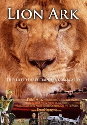 Lion Ark: film preview – powerful, feel-good documentary exposing animal cruelty in Bolivian circuses