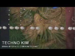 "Love Life, Hate Ketamine – a plea from ""Techno Kim""."