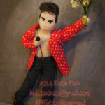 knitted Morrissey doll anyone? the perfect xmas present…